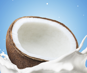 Natural Coconut Milk and Cream