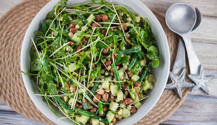 Three Bean Salad with Apple Cider Vinaigrette